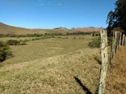 Fazenda com 265 hectares com gás encanado para empresas ou construtora igrejinha br 267