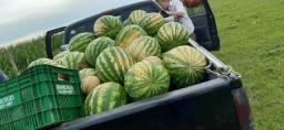 Vendo melancia e milho verde