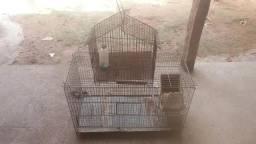 Duas gaiola