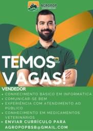 Título do anúncio: VENDEDOR BALCÃO / Agropecuária