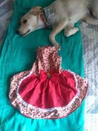 Vestidos Pet (R$35 cada)