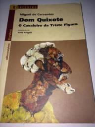 Dom Quixote o Cavaleiro da Triste Figura