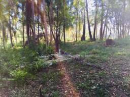 Pertinho da Cidade Sitio Troco p/ Carro e Parcelo localizado em Caí/Portão 51 9.9193-8201