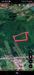 Negócio de ocasião 21 hectares aguapés perto da 101