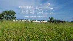 Fazenda 2074 Hectares Pecuaria Dupla Aptidao