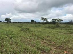 Fazenda à venda, 7260000 m² por R$ 13.000.000,00 - Zona Rural - Paraíso do Tocantins/TO