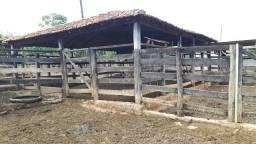 Fazenda Beserra formada cultura escritura