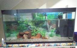 Vendo aquário 170L
