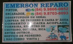 Emerson Reparos