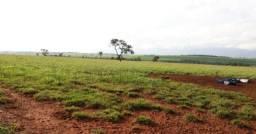 Linda Fazenda de Dupla Aptidão com 270 alqueires em Naviraí - Ms