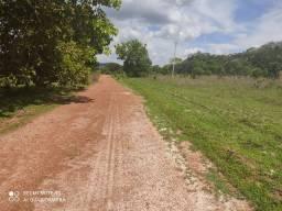 Fazenda 470 hectares município de Gurupi bruta