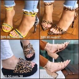 Sapato feminino, sandália, tênis, rasteirinha