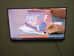 Tv Ld smat 43 Polegadas marca  Philco $1300 seis meses uso liga *