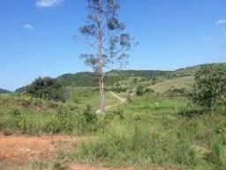 Fazenda 350ha cajueiro