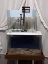Dois aquários um filtro e um aquecedor