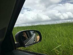 Fazenda 295 alqueires entre Dom Elizeu e Rondon -PA * zap