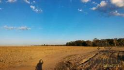Oportunidade de Excelente Fazenda Para Agricultura!!!