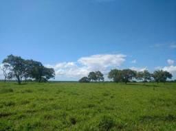 Fazenda à venda 705 Ha por R$ 6.300.000 - Zona Rural - Paraíso do Tocantins/TO