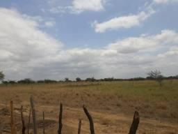 Área com 1.150 hectares terra nua na bahia