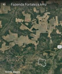 Fazenda em Monte Alegre do Piauí - PI