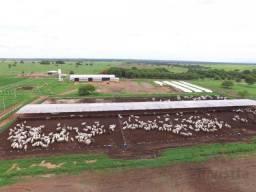 Fazenda de 4.449 Ha - Para Integração em Paraíso do Tocantins