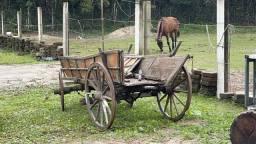 Título do anúncio: Vendo carroça!