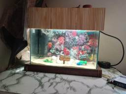 Aquario 17.5 lts