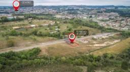 Terreno à venda, 325 m² por R$ 52.000,00 - Lagoa - Irati/PR