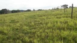 Área à venda, 1000 m² por R$ 45.000 - Área Rural - Alfredo Marcondes/SP