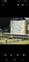 Terreno com Jazigo Jardim da Saudade Pinhais Av Maringá