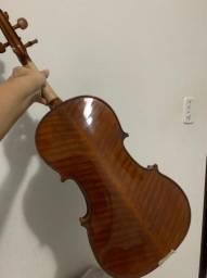 Viola erodita