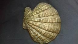 Concha do Mar em Bronze