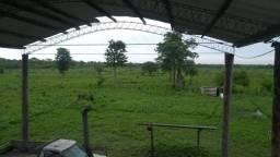 Fazenda Paraguay