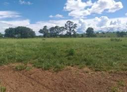 Oportunidade de Fazenda com 975 Alqueires em Ribas do Rio Pardo - Ms