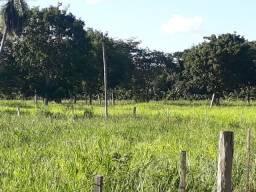 Chácara Beira do Asfalto com 26,8 Hectares