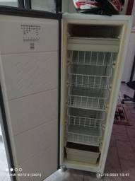 Título do anúncio: Freezer Vertical 110v
