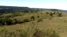 Fazenda 301 hectares