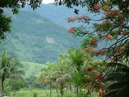 Sitio na Costa Verde