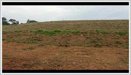 Terreno 1000m² ao lado de Piedade