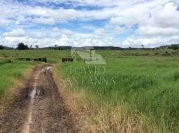 Fazenda de 1315 hectares  em Nova Monte Verde-MT