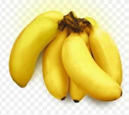 Vendo Mudas de Banana