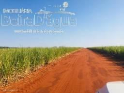 Fazenda 390 Alqueirao Arrendada para Usina de Cana e Estrutura Show com Pecuaria
