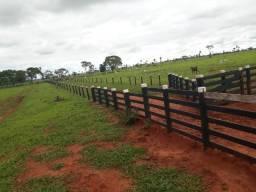 Linda fazenda com 180 Alqueires em Anaurilândia Ms de frente p Asfalto