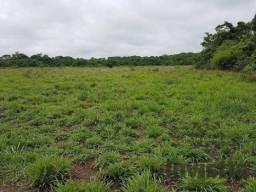 Fazenda Para Dupla Aptidão em Paraíso do Tocantins