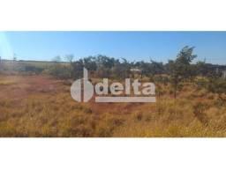 Terreno para alugar em Tibery, Uberlândia cod:599427