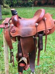 feae3a384 Cavalos no Brasil - Página 84 | OLX