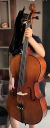 Cello CE 300 Eagle