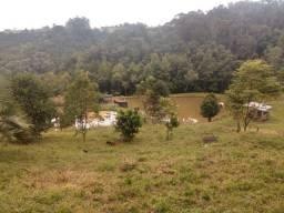 Sitio/Chacara/Lotes/Terrenos em Urubici/Francisco Krtiscka Corretor de Imóveis