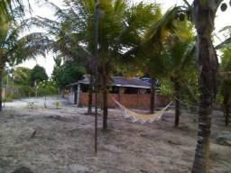 Sitio Com Casa de 2 Quartos, 2 Tarefas, Onibus na Porta
