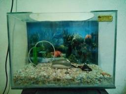 Aquário para peixes 45 litros